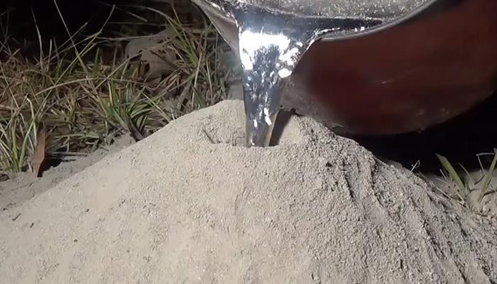 Эксперимент с расплавленным алюминием и заброшенным муравейником.