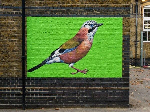 Исчезающие виды птиц от лондонского художника.