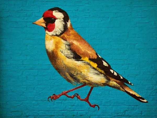 Серия работ в поддержку исчезающих видов птиц. Щегол.