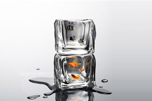 Аквариум Ice Cube от дизайнера Se Xin.
