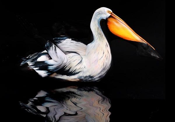 Пеликан  в изображении немецкой художницы.