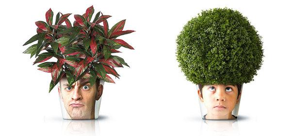Забавные горшки для комнатных растений.