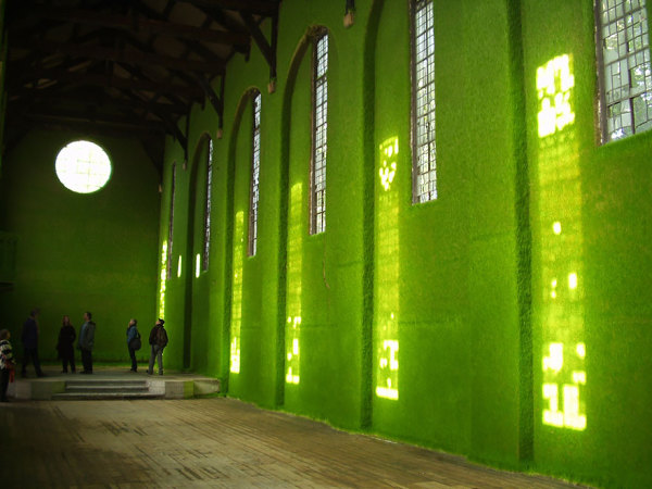 Зеленые стены.