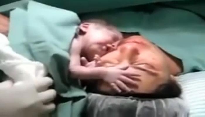 Новорожденный малыш демонстрирует огромную привязанность к матери.