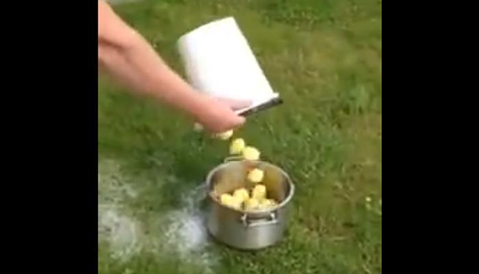 Чистка картошки по-мужски.