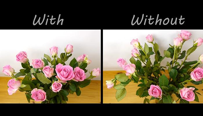 Как аранжировать цветы не хуже профессионального флориста.