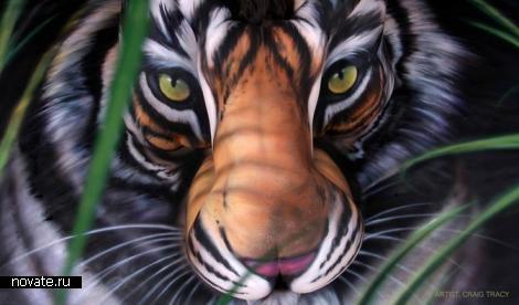 Арт-проект - Последний тигр Южного Китая