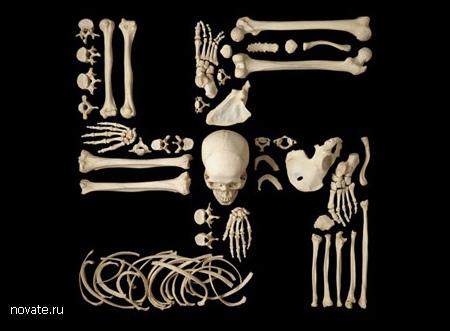 Фигуры из человеческого скелета на военную тему