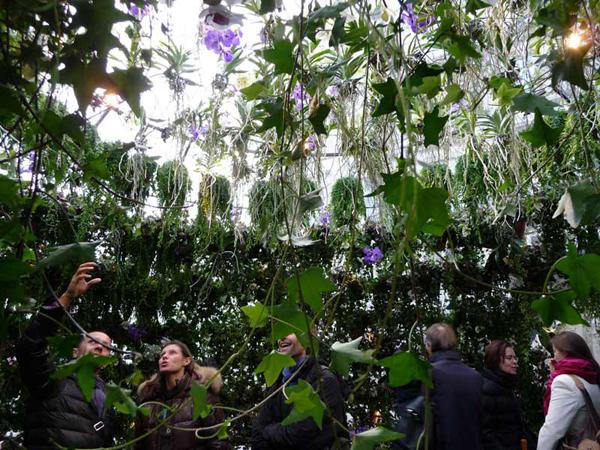 Инсталляция Ma Bulle, Ma Plante and Moi от Эмари Геллон (Amaury Gallon) в Париже