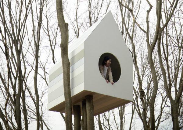 Bird-apartment – скворечник для птиц и людей