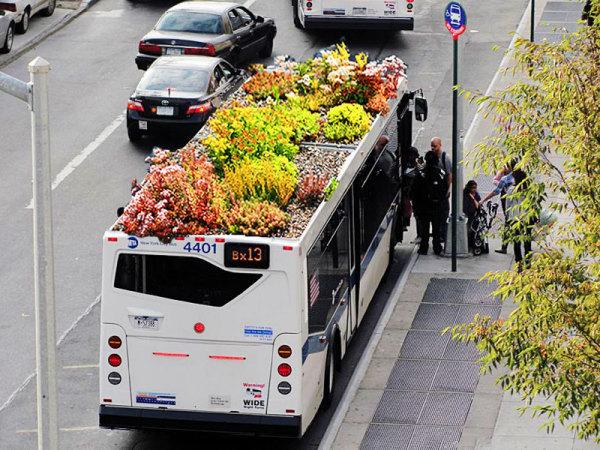 автобус-клумба