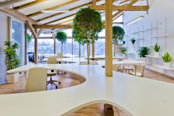 Office Greenhouse – зеленый офис от OpenAD