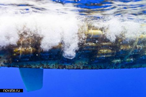 Парусный катамаран Plastiki. Экологический «манифест» из пластиковых бутылок