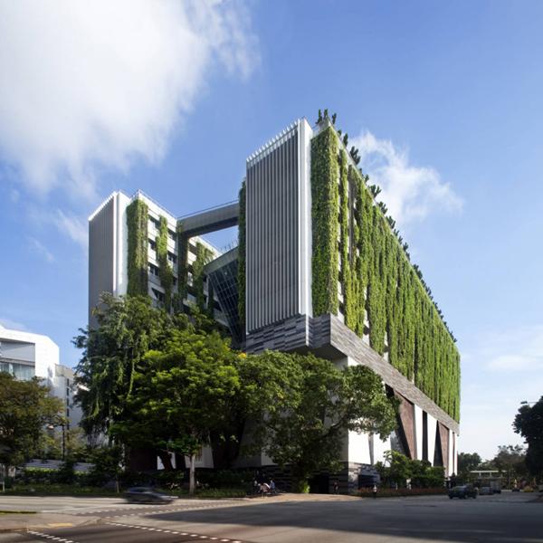 School of the Arts – эко-проект школы искусств в Сингапуре