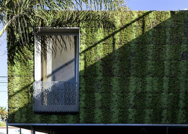Brooks Avenue House - калифорнийский эко-дом от канадских архитекторов
