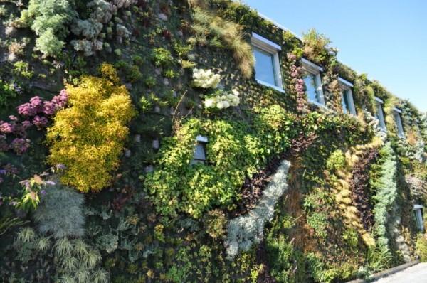 Вертикальный городской сад от Green Over Grey