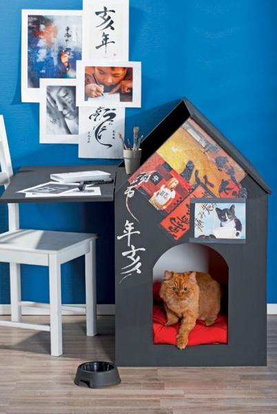 Креативные способы организации территории для домашних животных