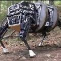 Новый американский боевой робот «Donkey» догонит и съест