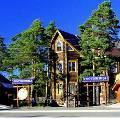 На Алтае откроют первый эко-арт-отель