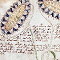 Нейросеть определила язык загадочного манускрипта Войнича