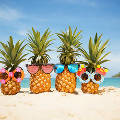 Как выбрать туристическое агентство, чтобы не испортить собственный отпуск