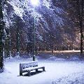 В парках Москвы предложат теплые беседки напрокат и электропледы