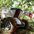 Робот-садовник избавит людей от нудной прополки