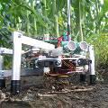 В Японии уволят всех фермеров и заменят их роботами