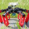 Создан робот, ориентирующийся в пространстве по Солнцу