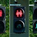Австрийские правые раскритиковали «толерантные» светофоры в Вене