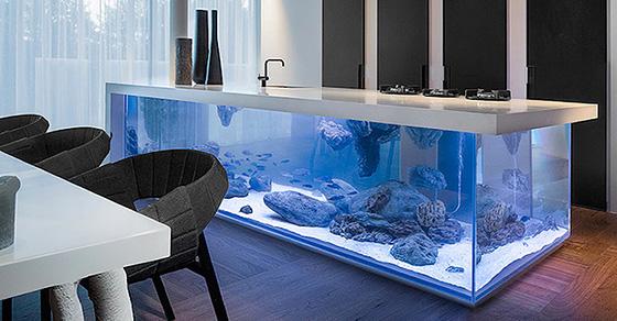 Огромный аквариум, встроенный в кухонный остров