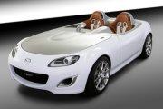 �������-��� Mazda, ������� ����������� ���� ������