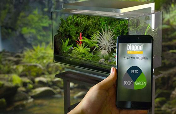 Biopod - домашний сад, не требующий ухода