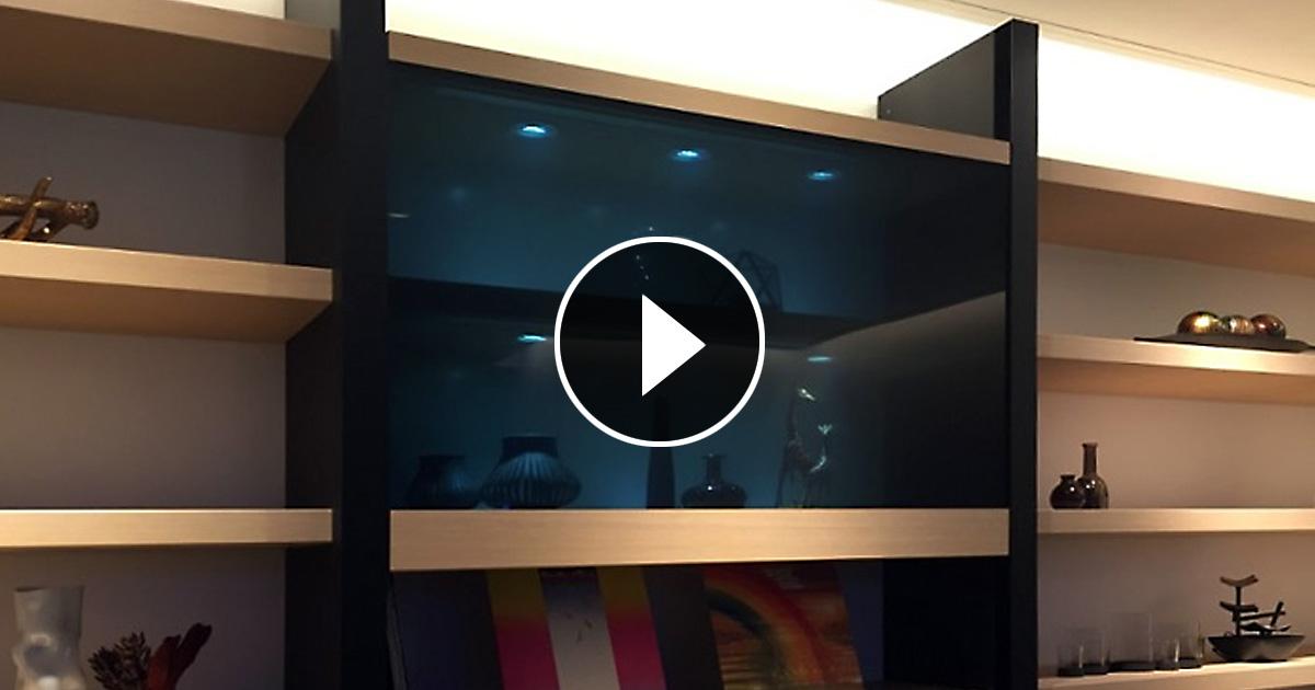Panasonic продемонстрировал новый прозрачный телевизор