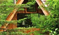 архитектура навеянный японской эстетикой домик лесу площадью метров
