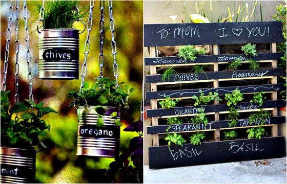 15 идей обустройства собственного травяного сада в домашних условиях