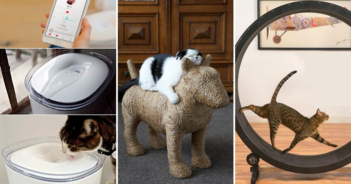 Для домашних питомцев: 11 интересных приспособлений, которые понравятся хозяевам кошек и собак