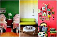 Цветотерапия: 20 великолепных цветовых схем, которые сделают жилье ярким и выразительным