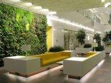 21 оригинальная идея для оформления декоративного садового участка внутри дома