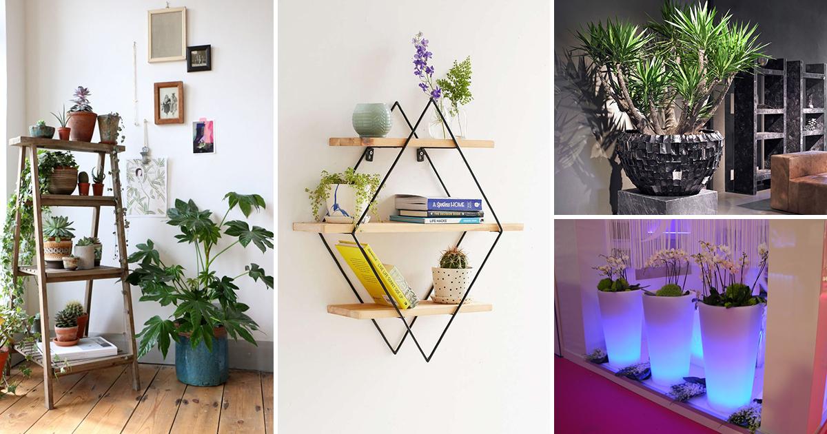Полки для цветов - фото множества идей для особых стеллажей