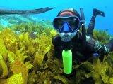 Наука и техника: Мини-баллон для дайверов, которые заменит громоздкий акваланг