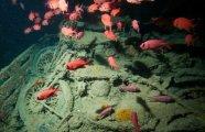 Архитектура: Подводное кладбище мотоциклов Тистлегорм - настоящая Мекка для ныряльщиков