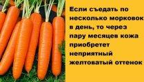 Лайфхак: Срочно на кухню: Привычные продукты, которые не такие уж и безобидные, как может показаться