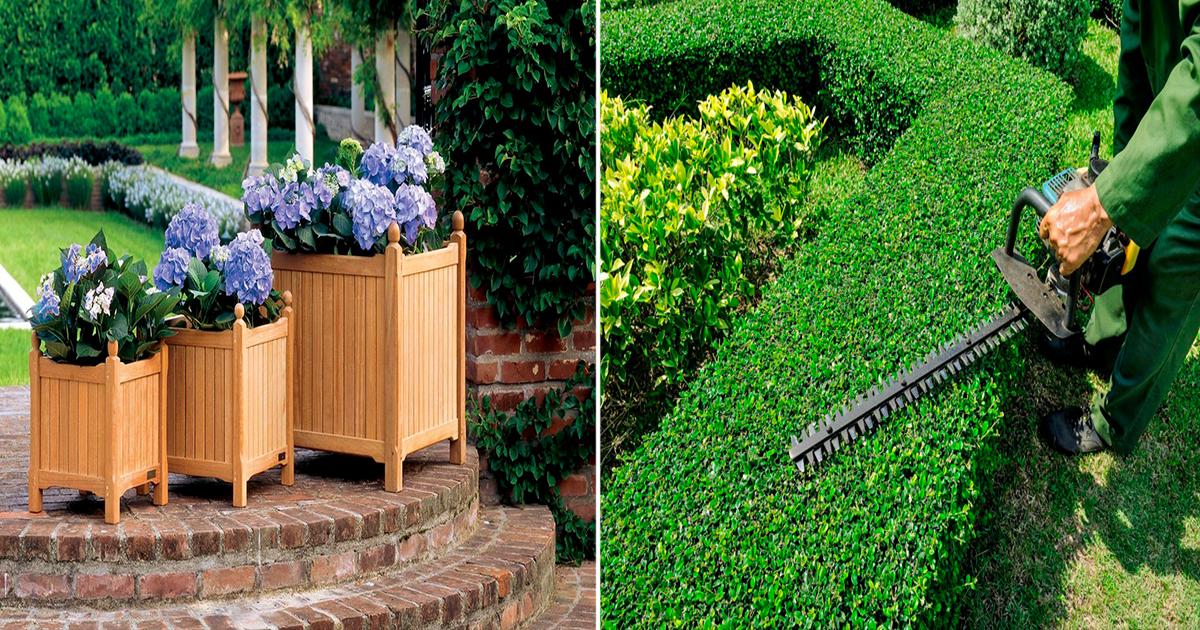 Оформление маленького дворика