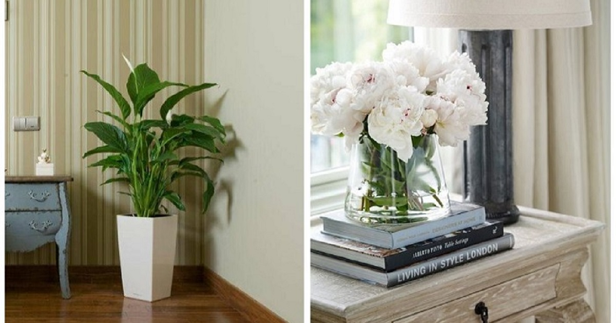 Как сделать съемную квартиру уютнее: 10 советов, 40 примеров — INMYROOM