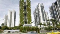 Архитектура: Гигантский вертикальный сад Сингапура  идеальный живой кондиционер и архитектурный шедевр