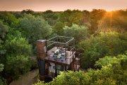 Архитектура: В заповеднике ЮАР можно отдохнуть в домике на дереве в окружении ...львов, тигров и носорогов