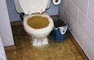 лайфхак прочистить засор туалете помощи пластиковой бутылки