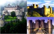 Архитектура: Отсутствие окон, тайные подземелья и трава на полу: 11 нетривиальных фактов о средневековых замках
